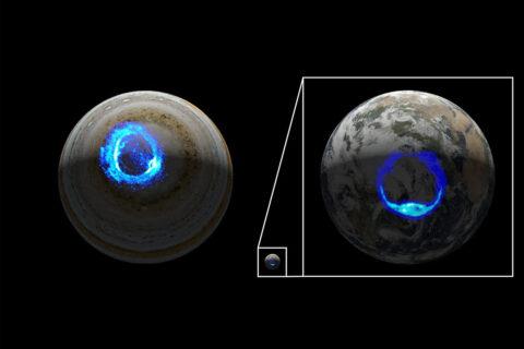 This illustration depicts ultraviolet polar aurorae on Jupiter and Earth. (NASA/JPL-Caltech/SwRI/UVS/STScI/MODIS/WIC/IMAGE/ULiège)