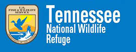 Tennessee National Wildlife Refuge