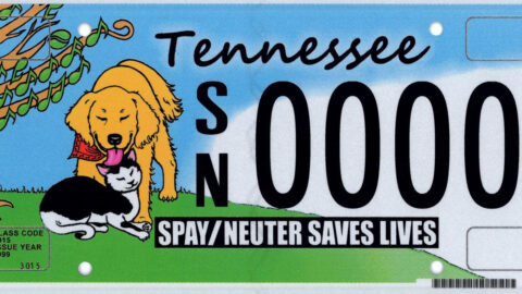 Tennessee Spay and Neuter Saves Lives license plates