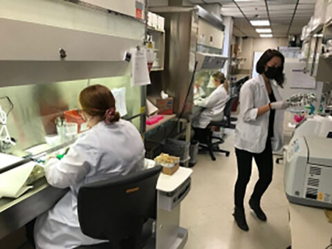 Kord Animal Health Laboratory's CWD unit microbiologists left to right: Lydia Suttles, Kelsey Londo, and CWD Unit Supervisor Jocelyn Revetta.