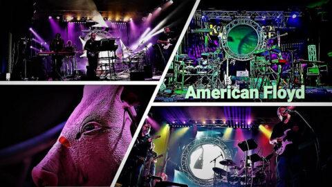 American Floyd
