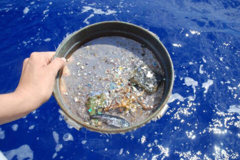 Scientists from the University of Michigan have developed a new way to find sources of ocean microplastics and track their movements using NASA satellite data. (University of Michigan)