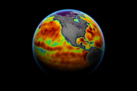 This map shows sea level measured by the Sentinel-6 Michael Freilich satellite from June 5th to 15th. Red areas are regions where sea level is higher than normal, and blue areas indicate areas where it's lower than normal. (NASA Earth Observatory)