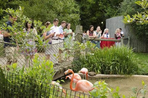 Nashville Zoo's Red, White & Zoo. (Caitlin Harris)