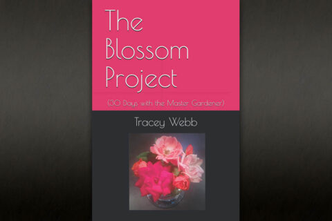 The Blossom Project