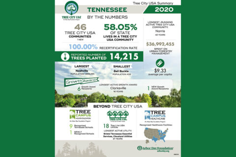 Tree City USA - 2020 Tennessee by the Numbers
