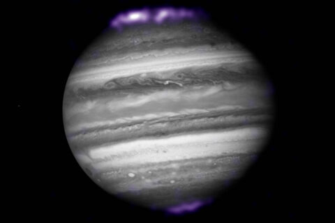The purple hues in this image show X-ray emissions from Jupiter's auroras, detected by NASA's Chandra Space Telescope in 2007. They are overlaid on an image of Jupiter taken by NASA's Hubble Space Telescope. Jupiter is the only gas giant planet where scientists have detected X-ray auroras. ((X-ray) NASA/CXC/SwRI/R.Gladstone et al.; (Optical) NASA/ESA/Hubble Heritage (AURA/STScI))
