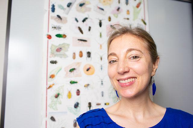 Austin Peay State University's Dr. Amy Wright. (APSU)