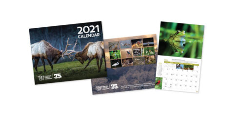 Tennessee Wildlife Federation holds Wildlife and Landscape Photo Contest for 2022 Calendar.