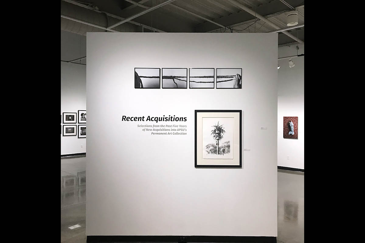 """""""Recent Acquisitions"""" exhibition at The New Gallery. (APSU)"""